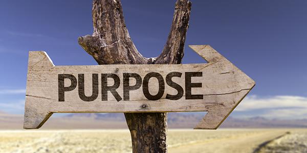 Op zoek naar je 'purpose'